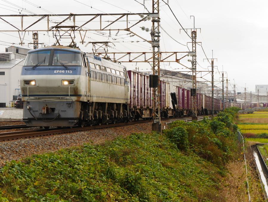 EF66 113 20161119