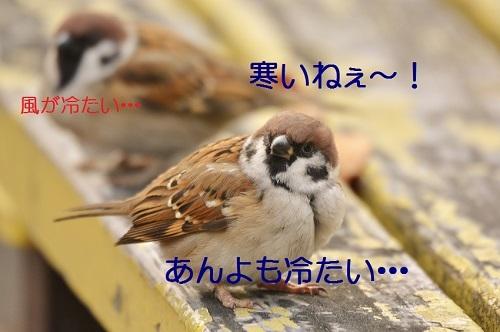 010_2016123020573210b.jpg