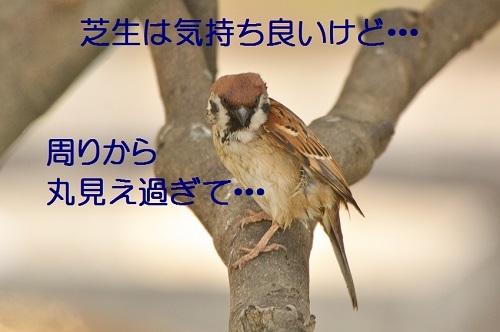 015_20170119211313825.jpg