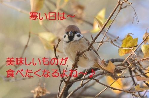 020_201612281955561d7.jpg