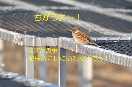 020_20170104200650183.jpg