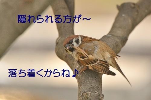 020_20170119211315ac0.jpg