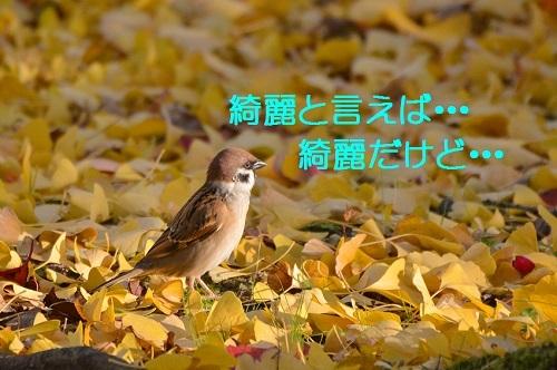 030_20161208192331959.jpg