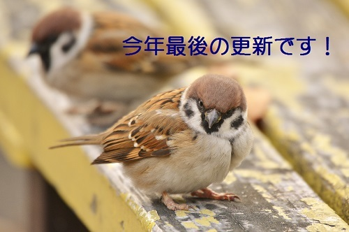 030_201612302057361c4.jpg
