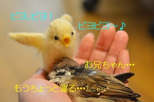 030_201701010216196b3.jpg