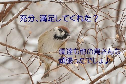 030_201702082153037cd.jpg