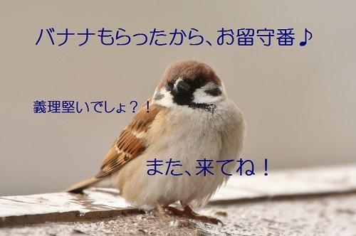 040_2017020920024949c.jpg