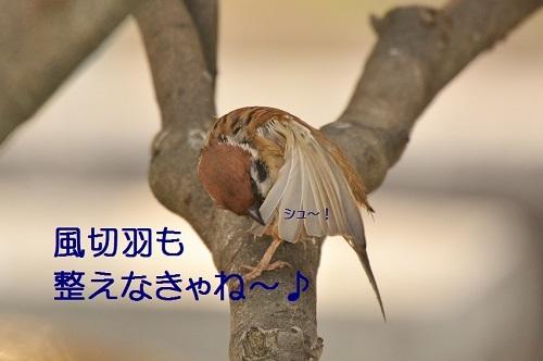 050_201701192113173a3.jpg