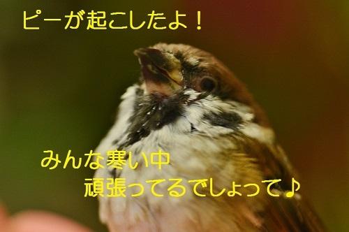 055_20161216200858c1b.jpg