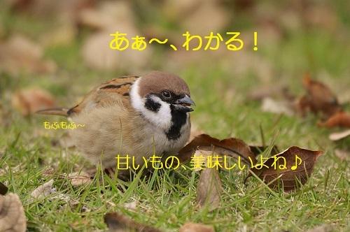 090_20161212200241390.jpg