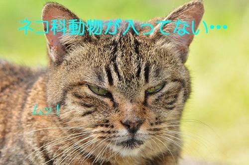 120_201611191948272de.jpg