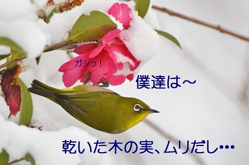 130_201701272120011e1.jpg