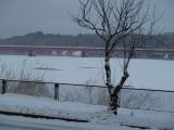 凍った湖面