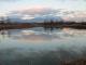 池の氷が溶けた