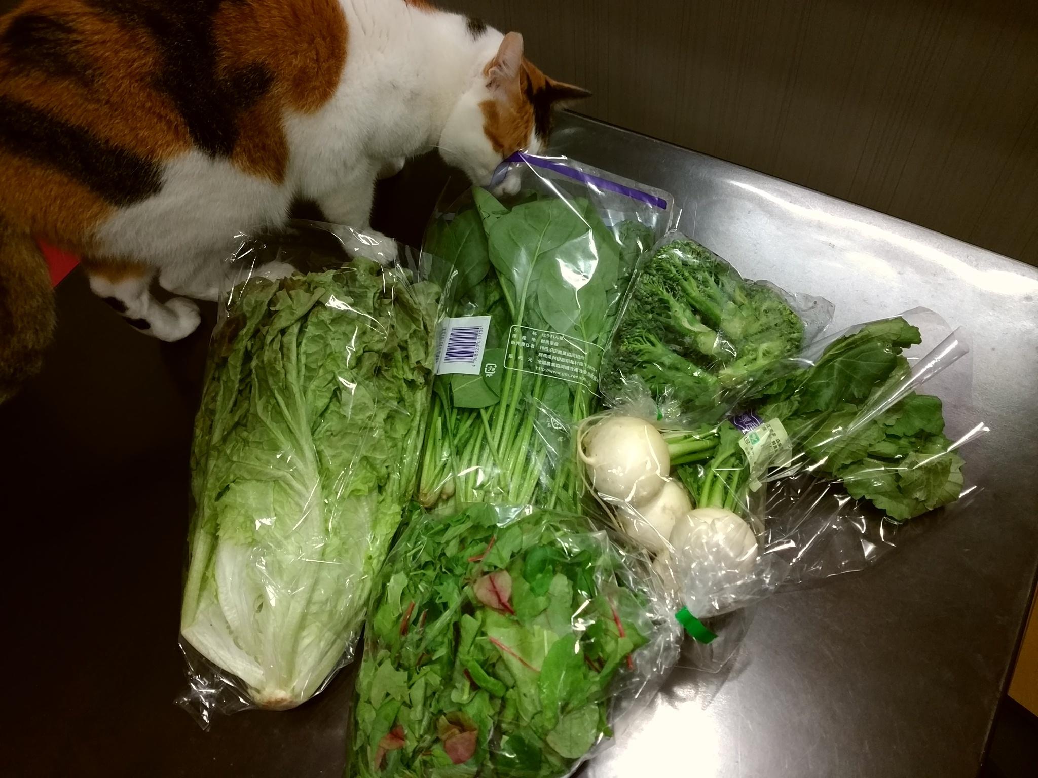 野菜20161213