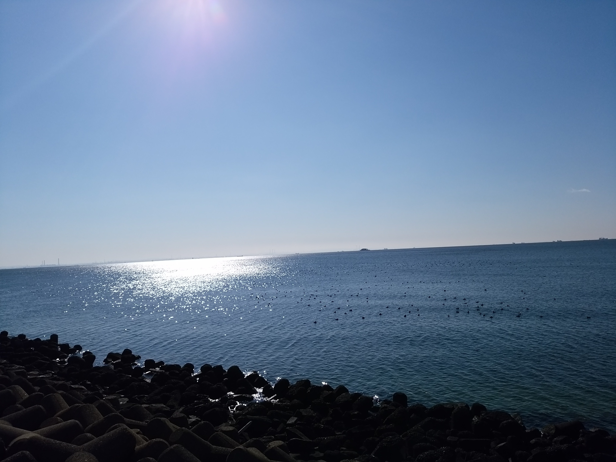 幕張海20170103