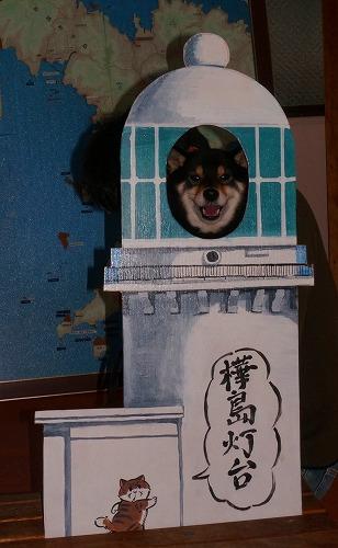 nomozaki (33)