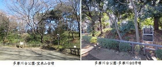 b0115-3 多摩川台公園①