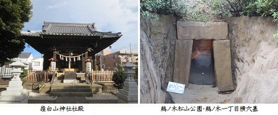 b0115-9 嶺白山神社-鵜ノ木一丁目横穴墓