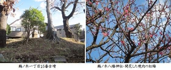 b0115-10 鵜ノ木1-15古墳-鵜ノ木八幡神社jpg