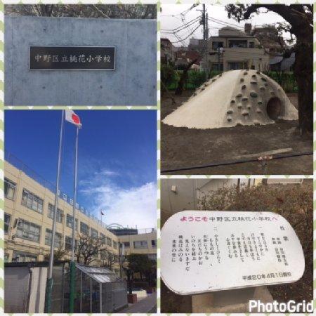 桃花小学校
