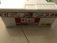 サンふじ170104