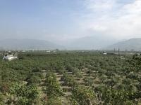 PM2.5で霞む山170113