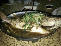 蒸し魚170113