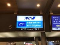 ANAカウンター170120