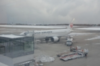 JAL170124