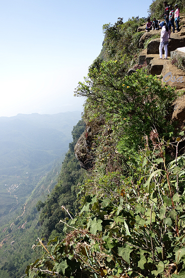 17-01-12_hortonplains-srilanka_0400.jpg