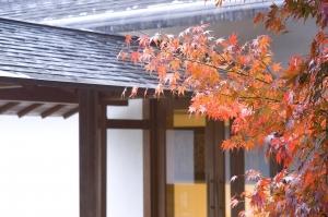 11-11もみじと人形館byTM_02