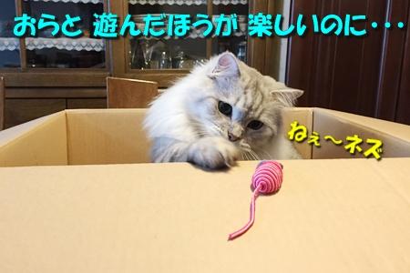 FINAL FANTASY XVつづき11