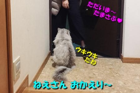 FINAL FANTASY XVつづき14