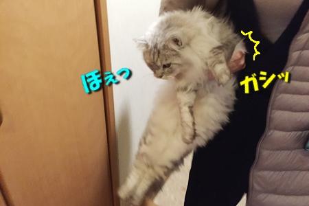 FINAL FANTASY XVつづき15