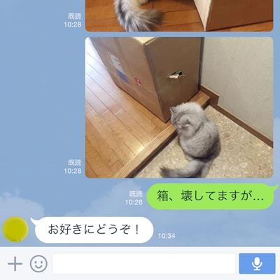 箱鑑定士5