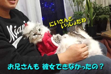MerryXmas!2