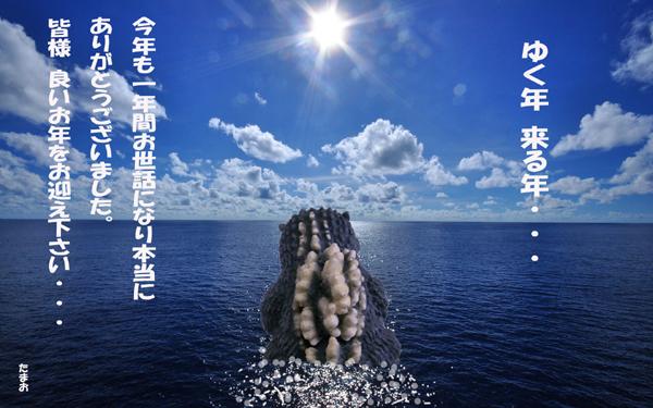 sea68.jpg