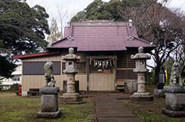 161112愛宕神社スダジイ⑪