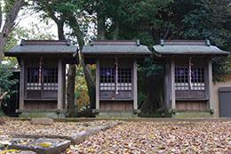 161123臼井稲荷神社の欅⑥