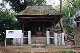 161123天御中主神社の欅⑧