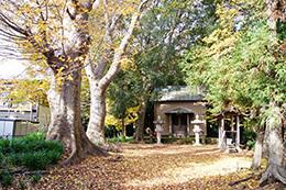 161126龍ヶ崎市 鹿嶋神社⑥
