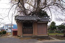 161207堂城稲荷神社銀杏④
