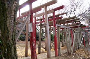 161207堂城稲荷神社銀杏⑥