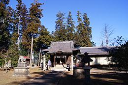 170128小川町八幡神社欅⑧