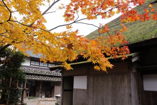 ⑥木羽葺き石置屋根
