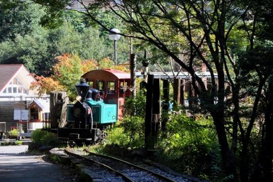 ③馬路森林鉄道