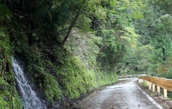 ⑯千本山への道