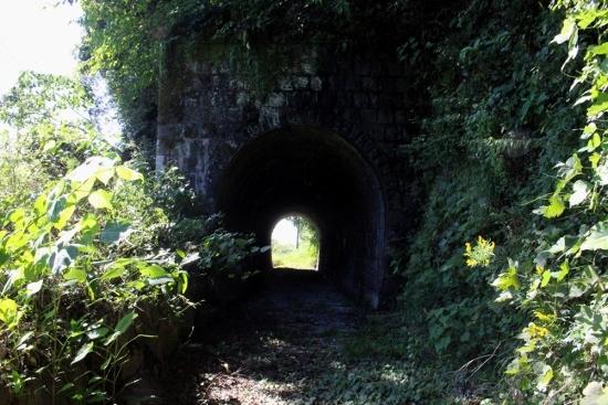 ⑳安田町付近のトンネル