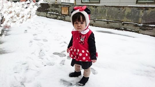 20161105 ガチ雪!?